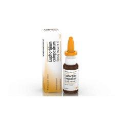 Euphorbium Compositum Heel Spray Nasale 20ML