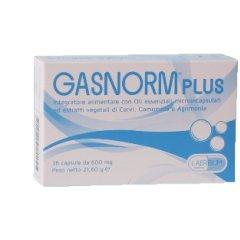 GASNORM PLUS 36CPS 23,4G