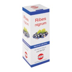RIBES NIGRUM MG 100ML GTT KOS