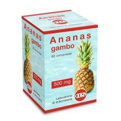 ANANAS GAMBO 90CPR 500MG