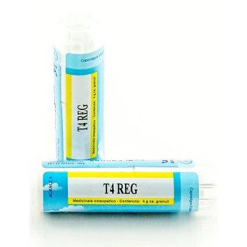 he.t4 reg gr 4g