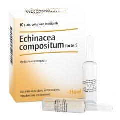 Echinacea Comp S 10f Ft Heel
