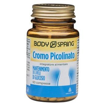 bs bio cromo picolin 60cpr