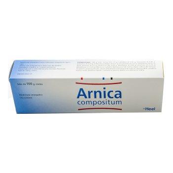 arnica comp.pom.100g heel