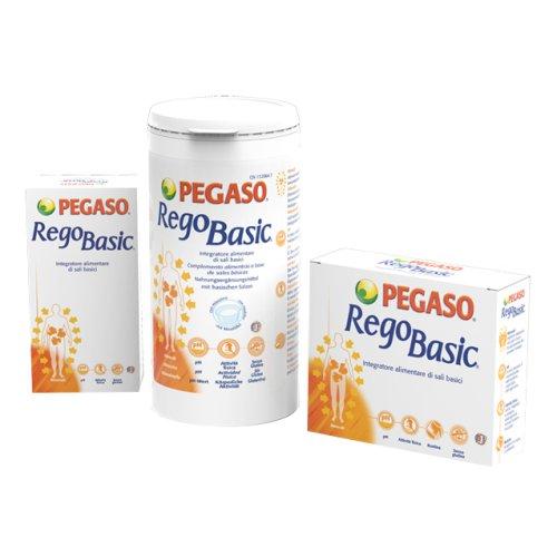 REGOBASIC 12 BUSTINE PEGASO
