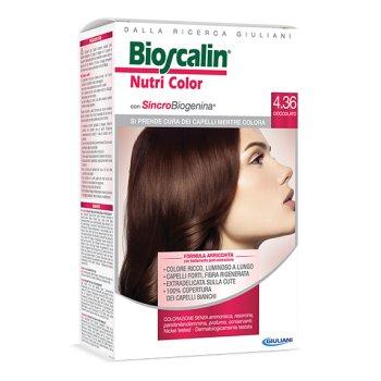 bioscalin nutricolor colorazione permanente 4.36 cioccolato